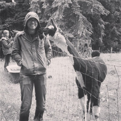 Do you love Ada's as much as this llama loves David?