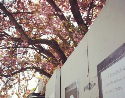 Ada's Spring 2013