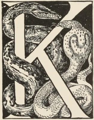 kaa-progressivessss
